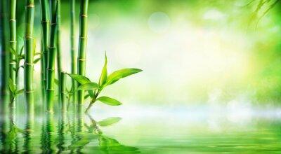 Bild Bambushintergrund - Gedrungenes Laub Mit Reflexion Im Wasser