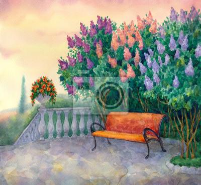 Bild Bank Unter Einer Blühenden Flieder