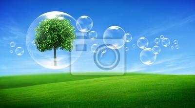 Baum in einer Blase