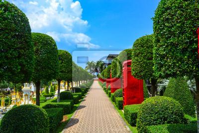 Bild Baum Konzept der Nong Nooch Garden & Resort