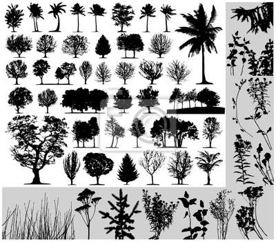 Bild Bäume, Gras, Pflanzen Vektor auf weißem Hintergrund