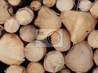 Baumstämme Rohstoff Brennholz Bauholz Möbelholz