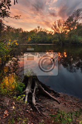 Beautiful autumn sunset at the river in the forest