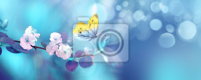 Bild Beautiful blue yellow butterfly in flight and branch of flowering apricot tree in spring at Sunrise on light blue and violet background macro. Elegant artistic image nature. Banner format, copy space.