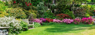 Bild Beautiful Garden with blooming trees during spring time, Wales, , banner size