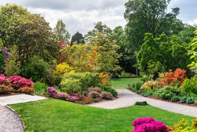 Bild Beautiful Garden with blooming trees during spring time, Wales, UK
