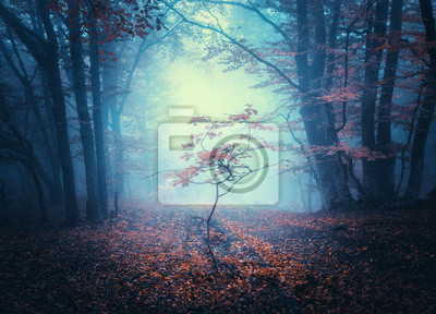 Beautiful small tree in blue fog in autumn. Colorful landscape with mystical forest. Enchanted trees with red leaves in mist. Scenery with dark dreamy foggy forest. Fall colors in october. Nature