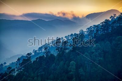 Bild Beautiful view of Foggy pine forest and sunrise at himalaya range, Almora, Ranikhet, Uttarakhand, India.