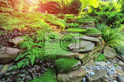 Bild Beautiful view on cute backyard in sunny day, fresh green grass lawn in sunlight, landscaping in the garden