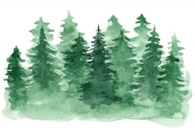 Bild Beautiful watercolor background with green coniferous forest. Mysterious fir or pine trees illustration for winter Christmas design, isolated on white background