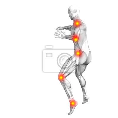 Begriffliche menschliche muskelanatomie mit roter und gelber ...