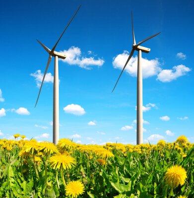 Bild Bereich der Löwenzahn mit Windkraftanlagen. Saubere Energie.