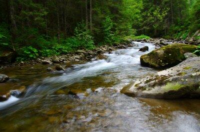 Bild Bergfluss