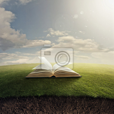 Bibel auf Gras.