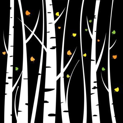 Bild Birch three for you design