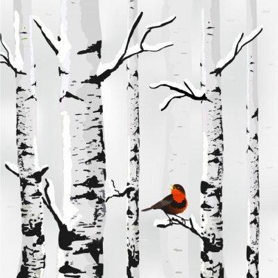 Bild Birke im Schnee, Winter-Karte im Vektor
