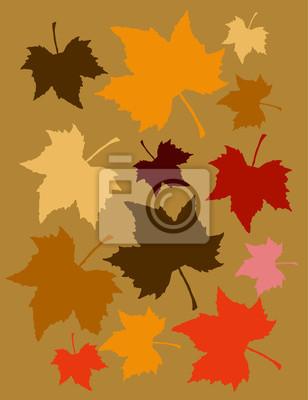 Blatt Zeichnen Leinwandbilder Bilder Baum Herbst Ahorn Myloview De