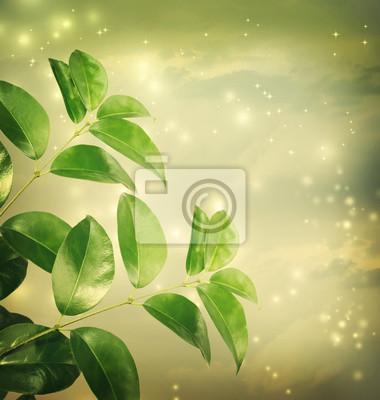 Blätter mit grünen Lichter Hintergrund