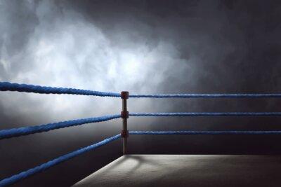 Bild Blick auf einen regelmäßigen Boxring, umgeben von blauen Seilen