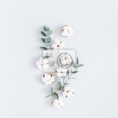 Bild Blumen Zusammensetzung. Muster gemacht von den Baumwollblumen und von Eukalyptus verzweigt sich auf blauen Pastellhintergrund. Flach legen, Draufsicht, quadratisch