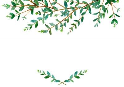 Blumengrenze Garland Eines Eukalyptus Branches Frame Einer Krauter