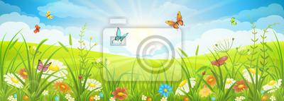 Bild Blumensommer oder Frühlingslandschaft, Wiese mit Blumen, blauer Himmel und Schmetterlinge