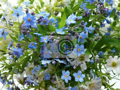 Blumenstrauß wald blumen blumenmuster blumenblatt weiß blume ...