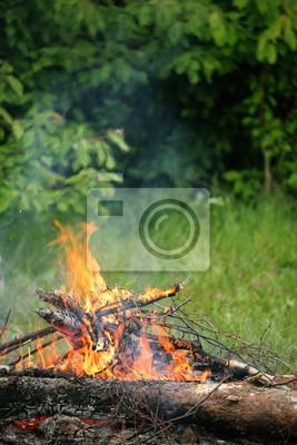 Bild Bonfire campfire fire summer forest nature fire