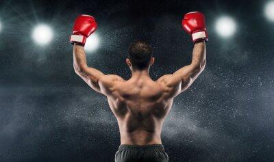 Bild Boxer champion enjoying his victory on lights