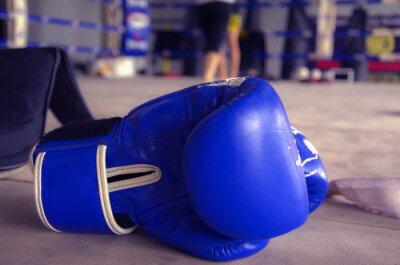 Bild Boxhandschuh Blau
