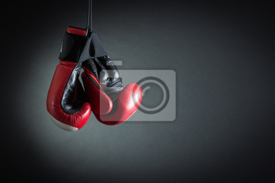 Bild Boxhandschuhe