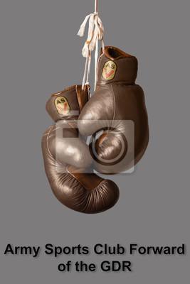 Boxhandschuhe in der Farbe der ehemaligen sozialistischen deutschen Armee Sport