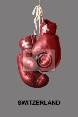 Boxhandschuhe in der Farbe der Schweiz