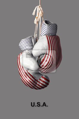 Boxhandschuhe in der Farbe der USA