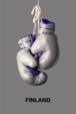 Boxhandschuhe in der Farbe von Finnland