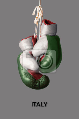 Boxhandschuhe in der Farbe von Italien