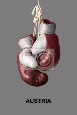 Boxhandschuhe in der Farbe von Österreich