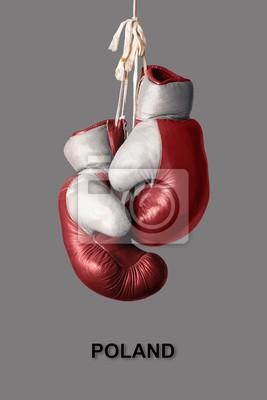 Boxhandschuhe in der Farbe von Polen