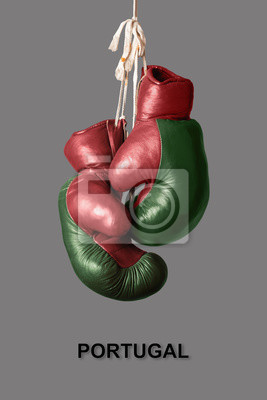 Boxhandschuhe in der Farbe von Portugal