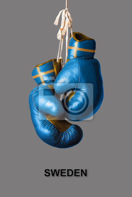 Boxhandschuhe in der Farbe von Schweden