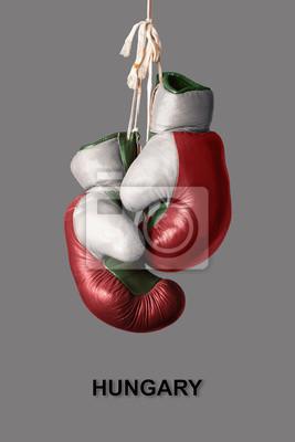 Boxhandschuhe in der Farbe von Ungarn
