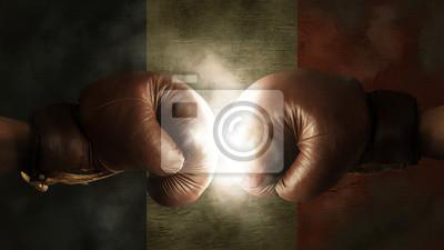 Boxhandschuhe mit der Flagge von Frankreich