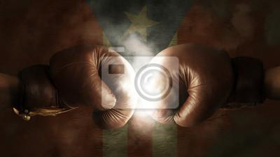 Boxhandschuhe mit der Flagge von Puerto Rico