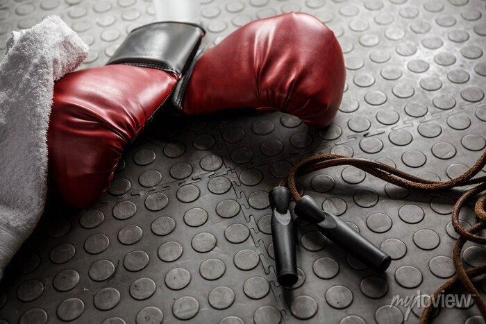 Bild Boxhandschuhe und Seil