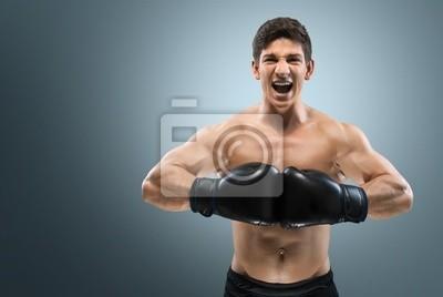 Boxing. Boxer