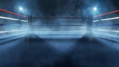 Bild Boxring im Scheinwerferlicht