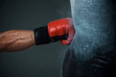 Bild Boxtraining und Boxsack