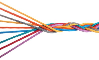 Bild Braided colorful ropes isolated on white. Unity concept