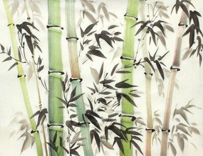 Bild bright bamboo forest