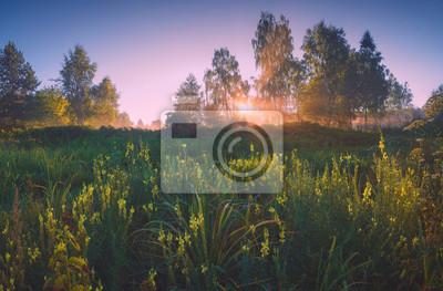 Bright Morgen in einem Tal